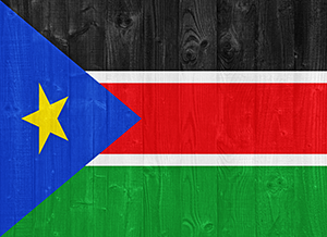 South sudan flag authentication